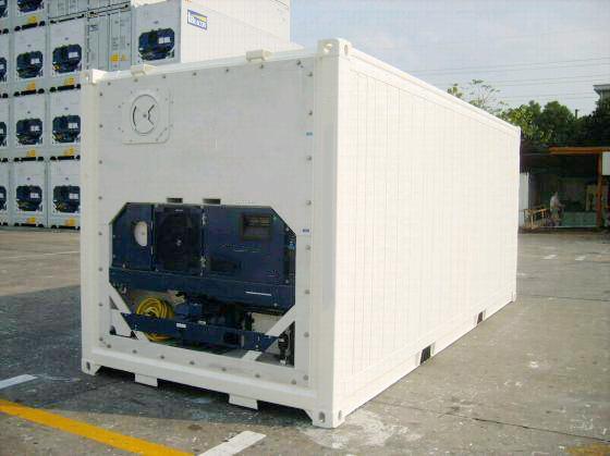 Container 20 feet chứa được bao nhiêu tấn hàng? - Ảnh 4